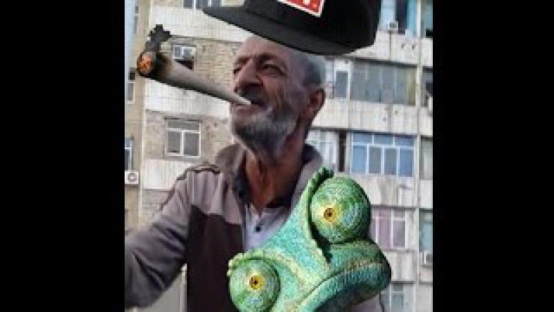 Turkmen prikol salamma remix
