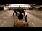 Bruno caprioli Choreography  Elastic Heart - Sia  Cover by Brielle von Hugel