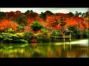 Japanese Satsuma Biwa Music