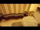США. Американская ванна а-ля девяностые с обоями на стенах