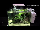The Art of the Planted Aquarium 2015 - Scapers Tank (Nano) category, part 9
