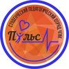 Студенческий Педагогический Отряд «Пульс» ЧГИК