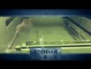 Технологии будущего и новейшая разработка российских ученых. Как создание 3Д принтера изменит наш  мир? Смотрите сегодня в прогр