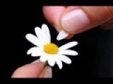 Speak Softly Love - Andy Williams