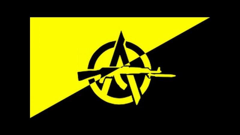 Самое главное о либертарианском государстве. Твоя свобода. Анархизм