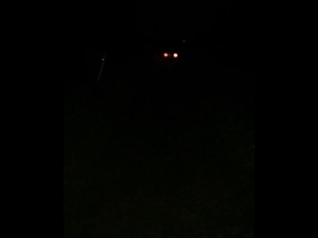 Bama_boy487 video