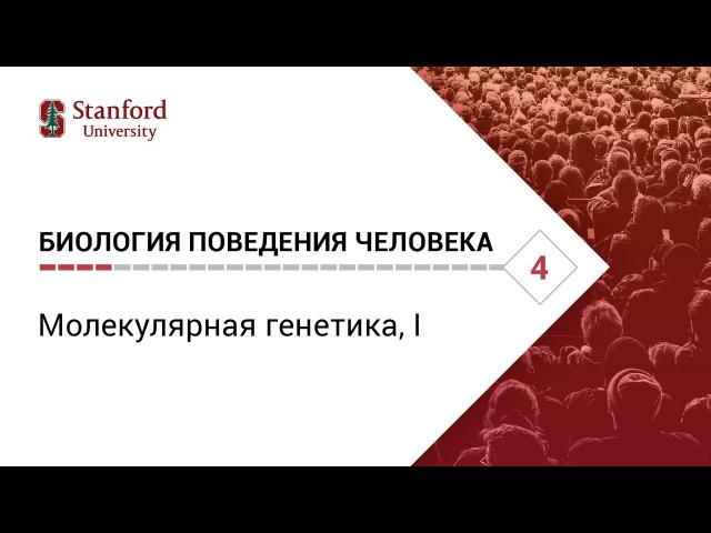 Биология поведения человека Лекция 4 Молекулярная генетика I Роберт Сапольск