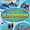 Анапский дельфинарий на Проспекте