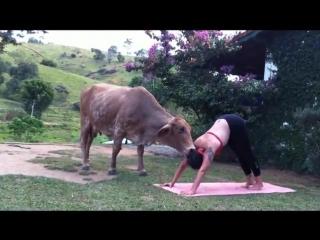 Yoga no Santuário Vale da Rainha