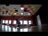 Exotic pole dance Lena Sher