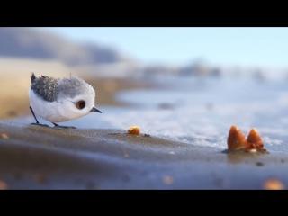 Piper • 2016 • Pixar