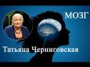 """Лекция Т. В. Черниговской """"Мозг- великий обманщик. Как мозг нас обманывает."""""""