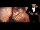 Территория заблуждений с Игорем Прокопенко. Sex HD
