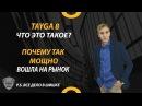 ТАЙГА 8 ЧТО ЭТО ТАКОЕ Дмитрий Лаевский О продукте Tayga8