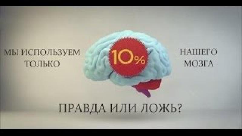 С.В. Савельев: Как заставить работать мозг