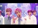 170225 방탄소년단 BTS - Spring Day 봄날 (Comeback Stage) @ 쇼 음악중심