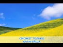 «Антигейша», ВиаГра: караоке и текст песни