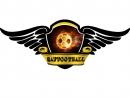1 тайм СШК Форсаж - Saffootball