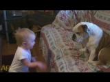 Ребенок рассказывает что то собачке
