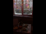 Дом...милый дом....🏡🏡🏡 Мы так хотели оливье и шампусик....🍾🍾🍾 Горлу писец..но, когда нас это останавливало😂😂😂 Как всегда всё начинается с моей кухни...мда....сколько здесь всего было ... и будет 😈😈😂😂😂😂🙈🙉🙊