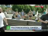 Быдло_ВДВшник_ударил_журналиста_НТВ_(День_ВДВ_2017)