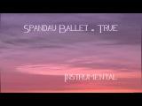 Spandau Ballet - True (Instrumental)
