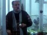 Звездочка моя ненаглядная (2000)