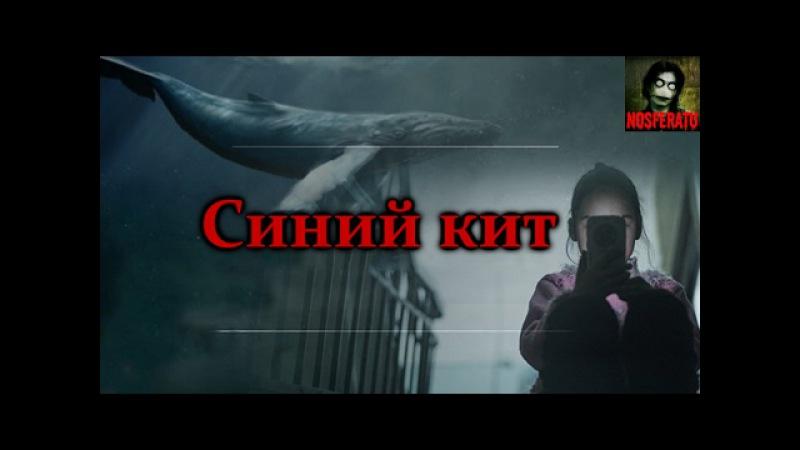Истории на ночь - Синий кит. Смертельная переписка Вконтакте. Жуткая смертельная...