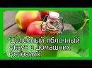 Простейший рецепт приготовления целебного яблочного уксуса