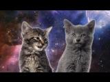 Space Cats — Magic Fly | Космические котята