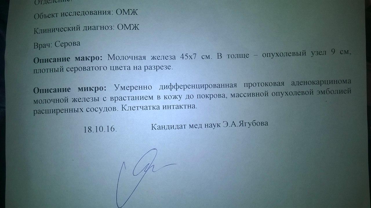 Москва, Римини  (Радость Моя Конгрем), сука, д.р. 24.12.2006 - Страница 18 BKmv0r0bVtQ