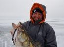 Зимняя ловля судака на вибы