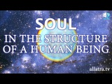 Soul in the structure of a human being. From the book