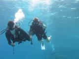Под водой с аквалангом )