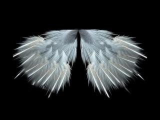 Engelbert Humperdinck - Angel love [Dieter Bohlen song] [HD⁄HQ]