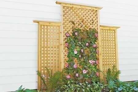 Опора для растений у стены дома