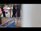 Trbanl Parkta (Video fa)