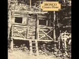 BRONCO - WELL ANYHOW 1970 FOLK ROCK
