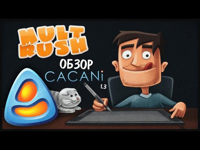 Обзор CACANi 1.3 от Mult Rush
