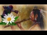 1 Час - Флейта североамериканских индейцев и звуки леса Relaxing Native Flute &amp Birds Singing