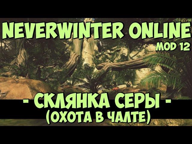 Склянка Серы (Охота в Чалте) | Neverwinter Online | Mod 12