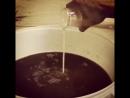 Внесение дрожжей в Nut Brown Ale