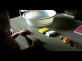 Обучающий мультфильм - Что тонет Что плавает И почему