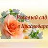 Розовый сад в Краснодаре