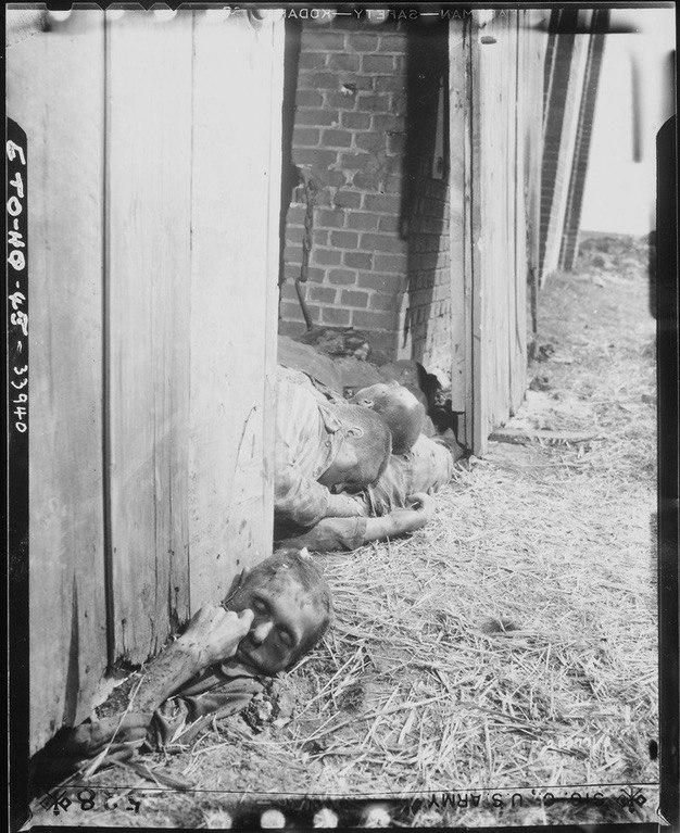 В апреле 1945 г. в концлагере Гарделеген эсэсовцы загнали в сарай около 1100 узников и подожгли. Некоторые из жертв пытались бежать, но были застрелены охранниками.