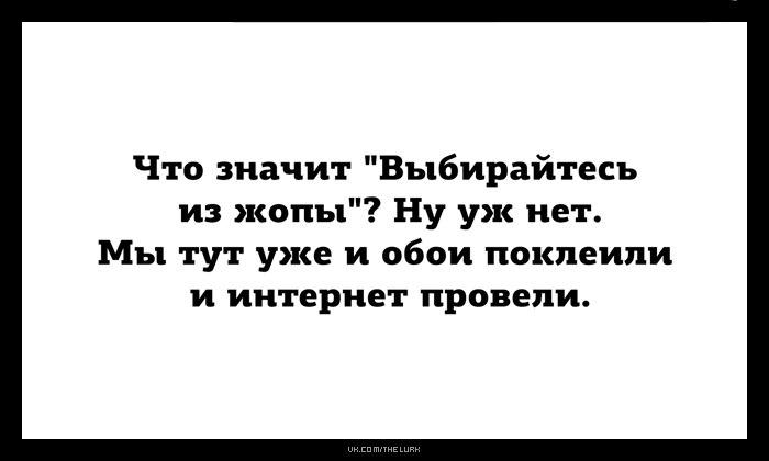 https://pp.userapi.com/c836232/v836232256/501ba/J88EIMzwUpU.jpg