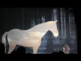 Лошадка и ежик в тумане
