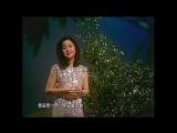 月亮代表我的心Yuèliàng Dàibiǎo Wǒ de Xīn