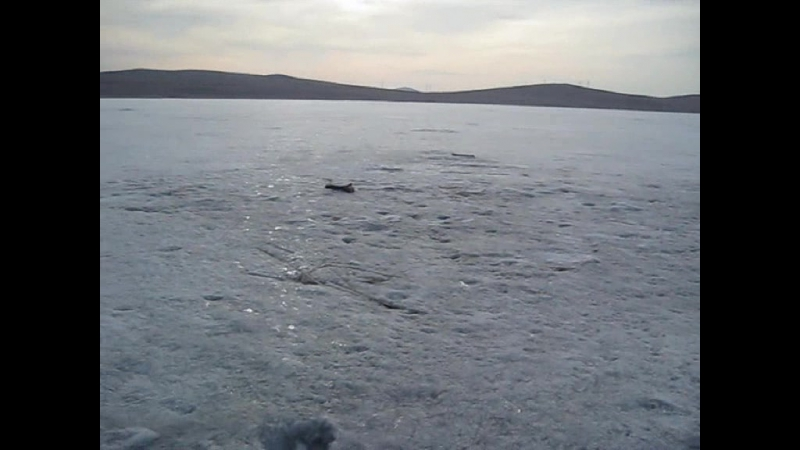 Рыбалка на озере Торма 02 04 2017 смотреть онлайн без регистрации