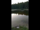 Галина Частухина - Live